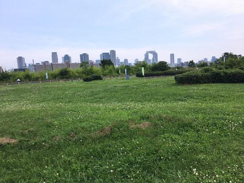 淀川河川公園西中島地区でレンタルサービス2019