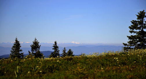 eplatzer, Schwarzwald,  Mont Blanc, Feldberg