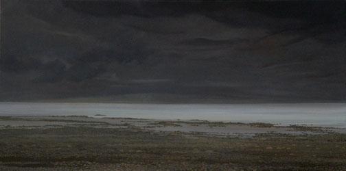 """Martin Guido Becker, """"Seeufer"""", 2008, Öl/Lwd, 55/110 cm"""