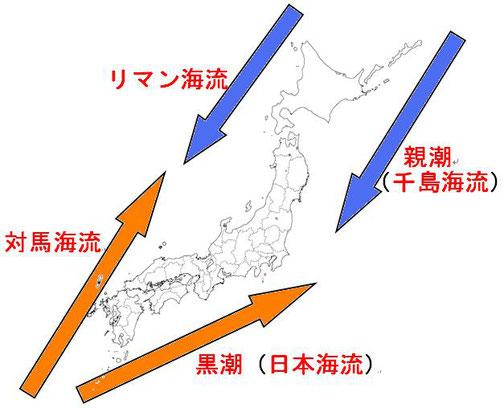 地理4-5 日本周辺の海と海流 解説