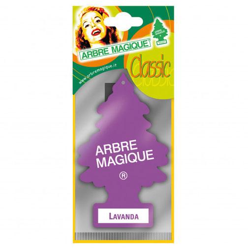 Geurboom Lavendel