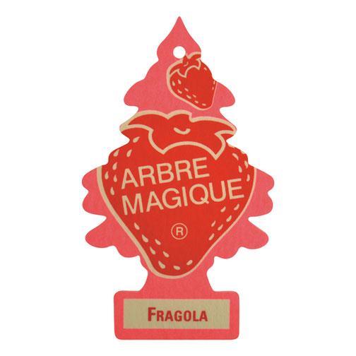 Geurboom Fragola