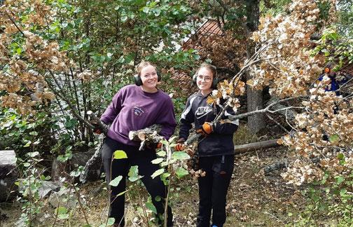 Klara und Clara im schwedischen Wald