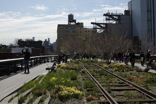 The High Line of New York City