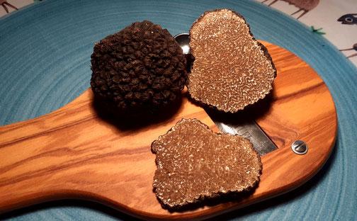 rüffelküche - Tipps zur Handhabung und Zubereitung von schwarzen Sommertrüffeln
