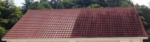 Moosentfernung vom Dach