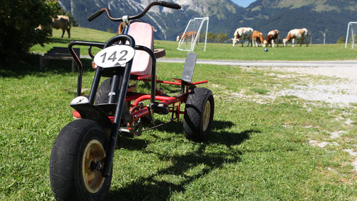 Urlaub am Bauernhof Hochreith, Go Kart