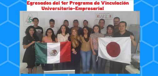 Programa para universitarios Lean Manufacturing