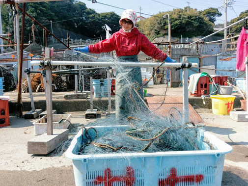 We provide easy fisherman's work activities available for everybody. If you are not familiar with getting on a boat or you are with small children, you can even try taking fish out from the nets at the harbor. It's easy and fun!