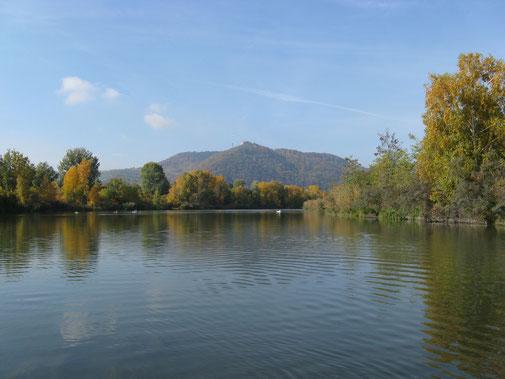 Offene Wasserfläche mit Sicht auf den Leopoldsberg und Kahlenberg.
