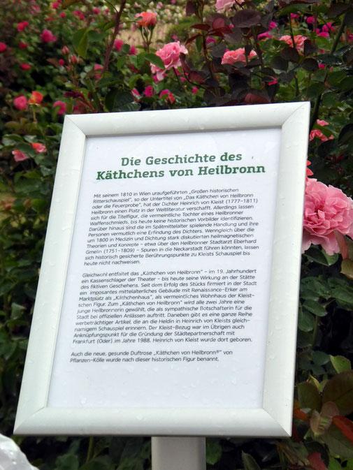 Die Geschichte zum Käthchen von Heilbronn