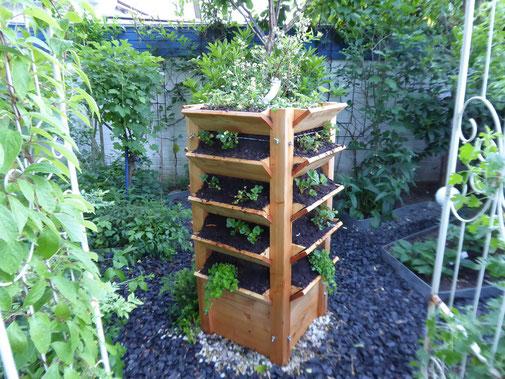 Hochbeet 6 , frisch bepflanzt