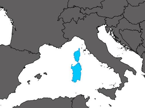 Algyroides fitzingeri
