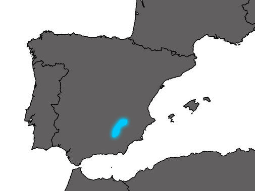 The distribution range of Algyroides marchi is limited to the pre-Baetic mountain range in southeastern Spain.