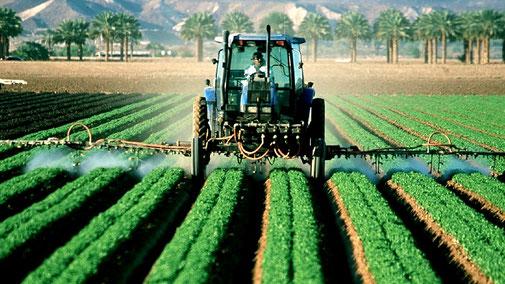 Welthunger, Tierleid und Völkerwanderung stoppen durch verantwortungsbewussten Konsum - fair4world