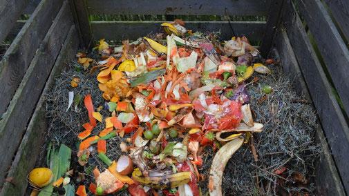 Richtig kompostieren - Abfallrecycling statt Müllgebühren - fair4world