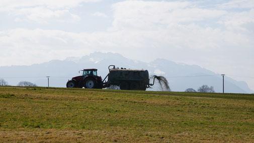Gülle - eine Gefahr für unser Grundwasser