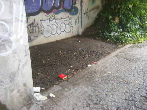 Schandfleck in FN: die Müllecke unter der Eisenbahnbrücke Aistegstraße