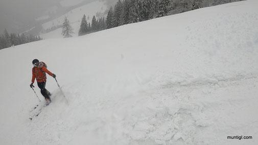 Dexi schaute sich die Schneedecke etwas genauer an :-)