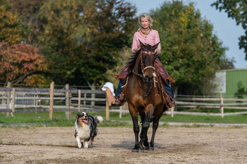 Philosophie Horsemanship Tanja Rühter-Böttger Reiterhof Rehedyk Seminar Kurse leichtes Reiten lernen