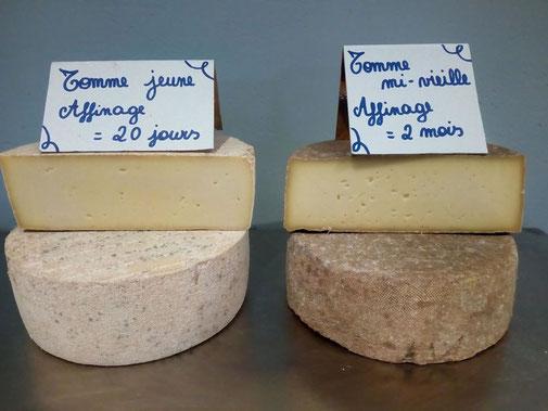 Fromage coeur d'artichaut Antoing Tournai