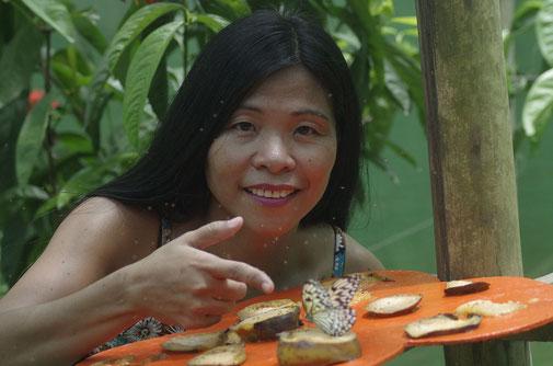 Natürlich darf auf Marinduque der Besuch auf einer Schmetterlingsfarm nicht fehlen