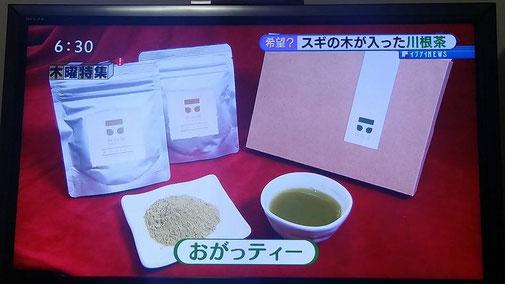 静岡県川根の有機栽培茶 樽脇園 無農薬 無化学肥料 オーガニック おがっティー