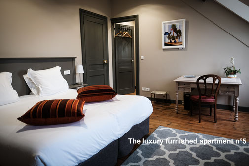 The nest - furnished apartment with view on the cathedral, with hotel services, in the city center of amiens in the somme. Serviced apartments.