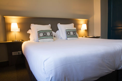 The nest - appartements meublés avec services hoteliers, vue sur le jardin au 1er étage, beaucoup de charme, plancher d'origine, cuisine équipée pour location à la semaine ou au mois en centre-ville d'Amiens, proche de gare, cathédrale