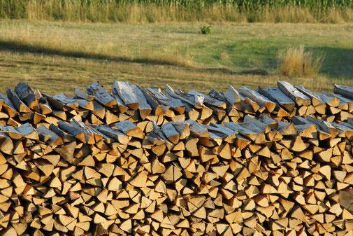 Frankenbrennholz