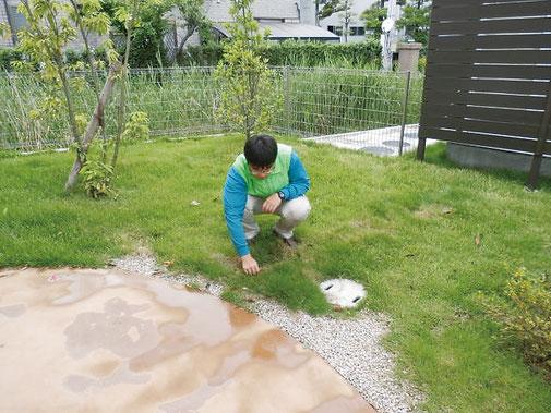 庭の除草・清掃