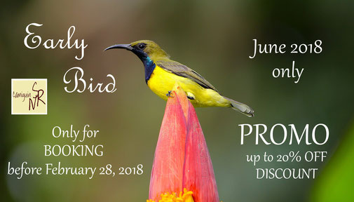 Early Bird Promotion, #Feelcamiguin, Promo, discount, vacation, holidays, summer, massage, accommodation with breakfast, Italian cuisine, homemade food, Camiguin island, Nypa Style Resort, Philippines