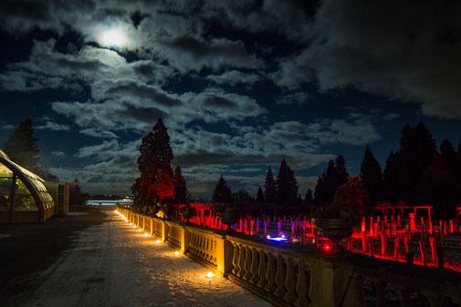 Beleuchtung zur Hochzeit auf der Insel Mainau
