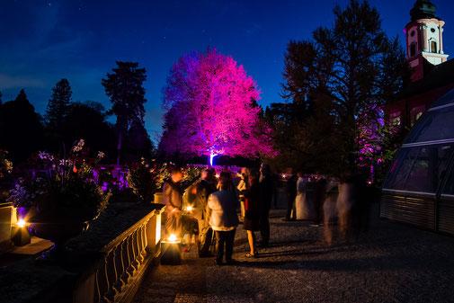 Musik feuerwerk Insel Mainau Hochzeit Konstanz