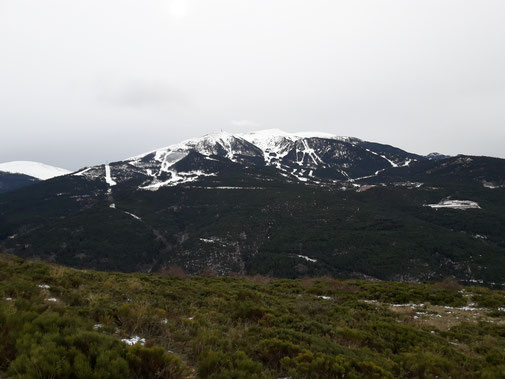 TC222 - Vistes des de la Ruta de la Muntanya - Tosa d'Alp