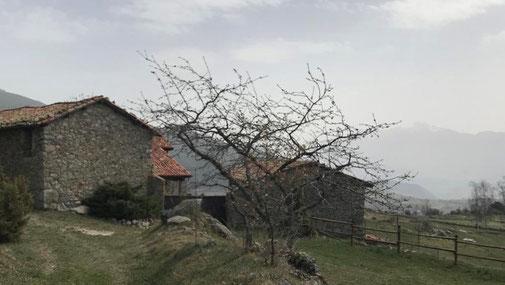 TC261 - Senderisme - Excursió - Lles de Cerdanya