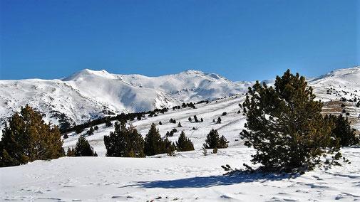 Raquetes de neu - Cotzè - Muntanyes
