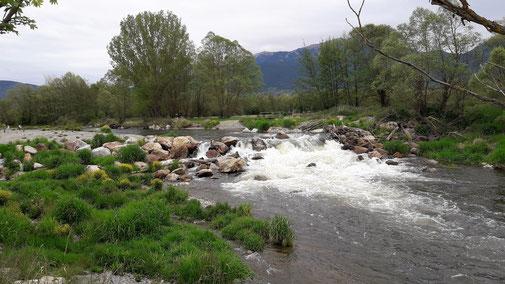 riu Segre