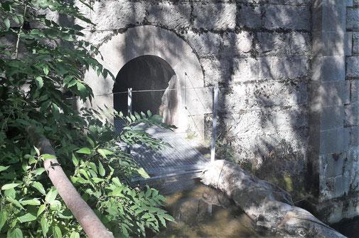 TC203 - Ruta del Segre - Sender de Cerdanya 619 - Túnel