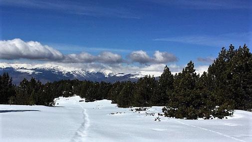 Raquetes de neu - Cotzè - Vistes