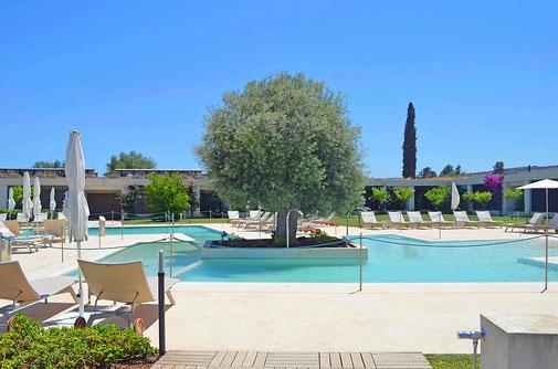 Sizilien Olivenbaum Pool Ferien Golfresort I monasteri