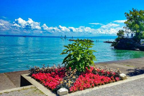 Bodensee Radweg, Radtour, Schweiz, Deutschland, Die Traumreiser