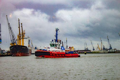 Hafen, Rotterdam, Niederlande, Die Traumreiser, Schlepper