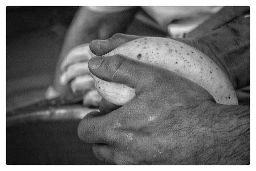 Vendita mozzarelle lucane on line fattoria granolat