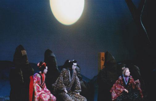 名月乗桂木(鹿角座)