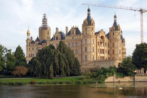 Trauerbuche am Schweriner Schloss in Schwerin