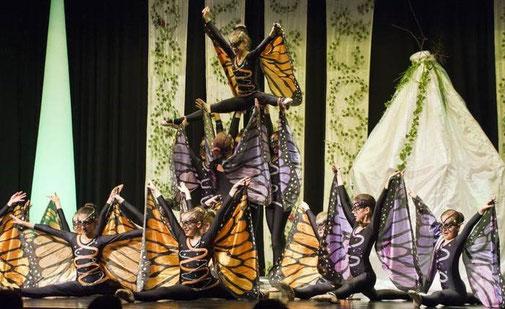 Ballettschule Idstein, Dance Moves, Traumwelten