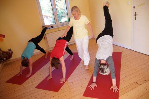 Yoga Studio Shanti Bergisch Gladbach Sand, Yoga-Lehrerin Gudrun WItte, Hatha Yoga, Shivananda Tradition, einbeiniger Hund