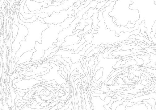 Portrait gezeichnet nur mit Linien, Landkartenoptik mit Höhenkurven, schwarz auf weiss