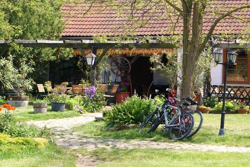 Jausenstation am Reitstall Althof im Burgenland, schattiger Gastgarten